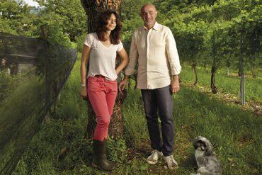 Cormano Winery Viticulturists